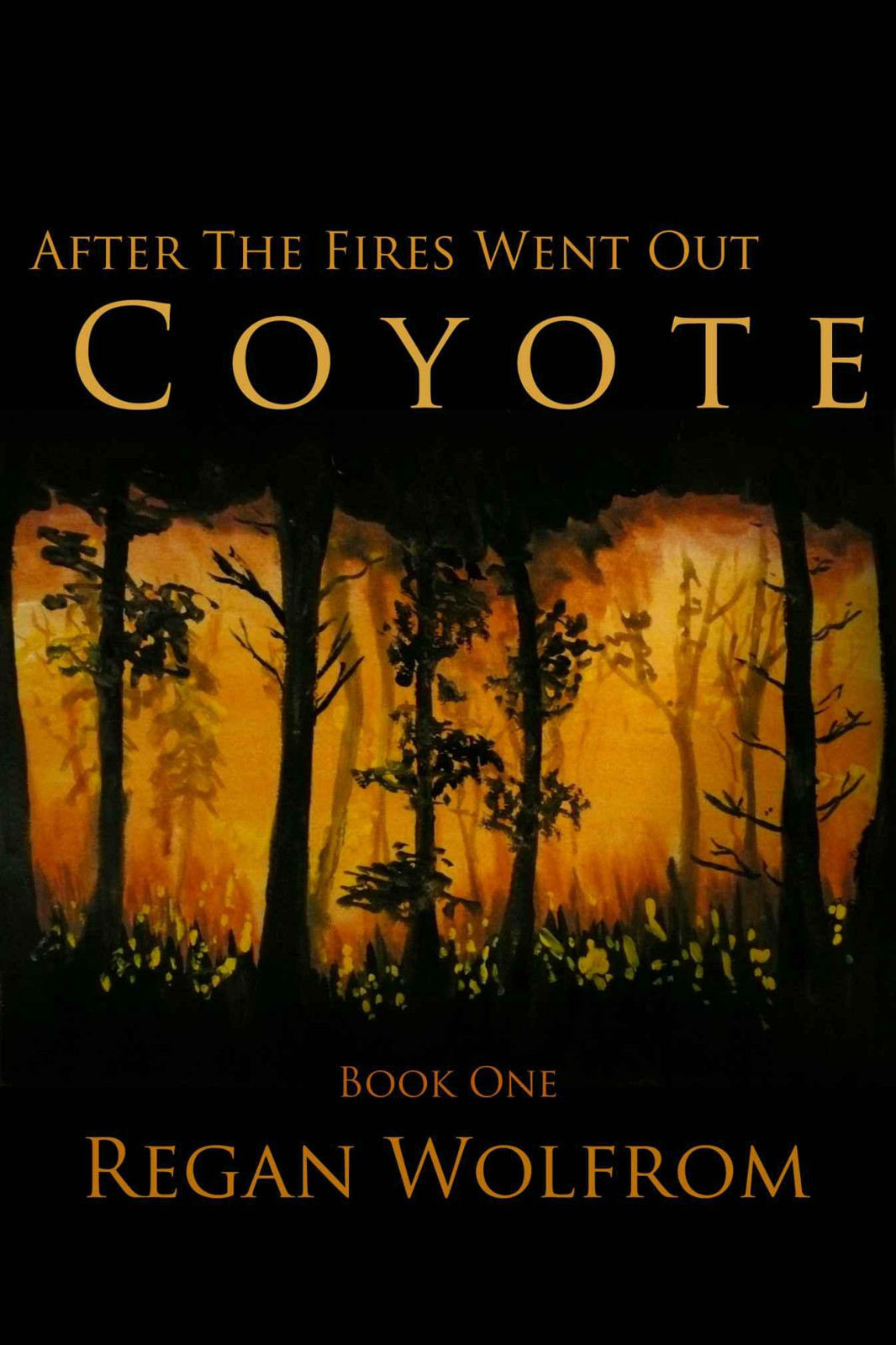 After The Fires Went Out: Coyote (Book One of the Post-Apocalyptic Adventure Series)