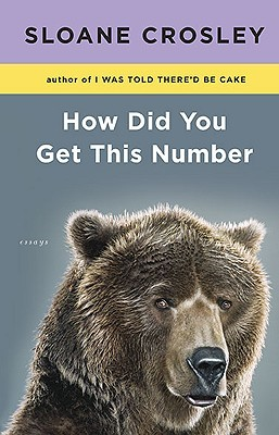 How Did You Get This Number (2010) by Sloane Crosley